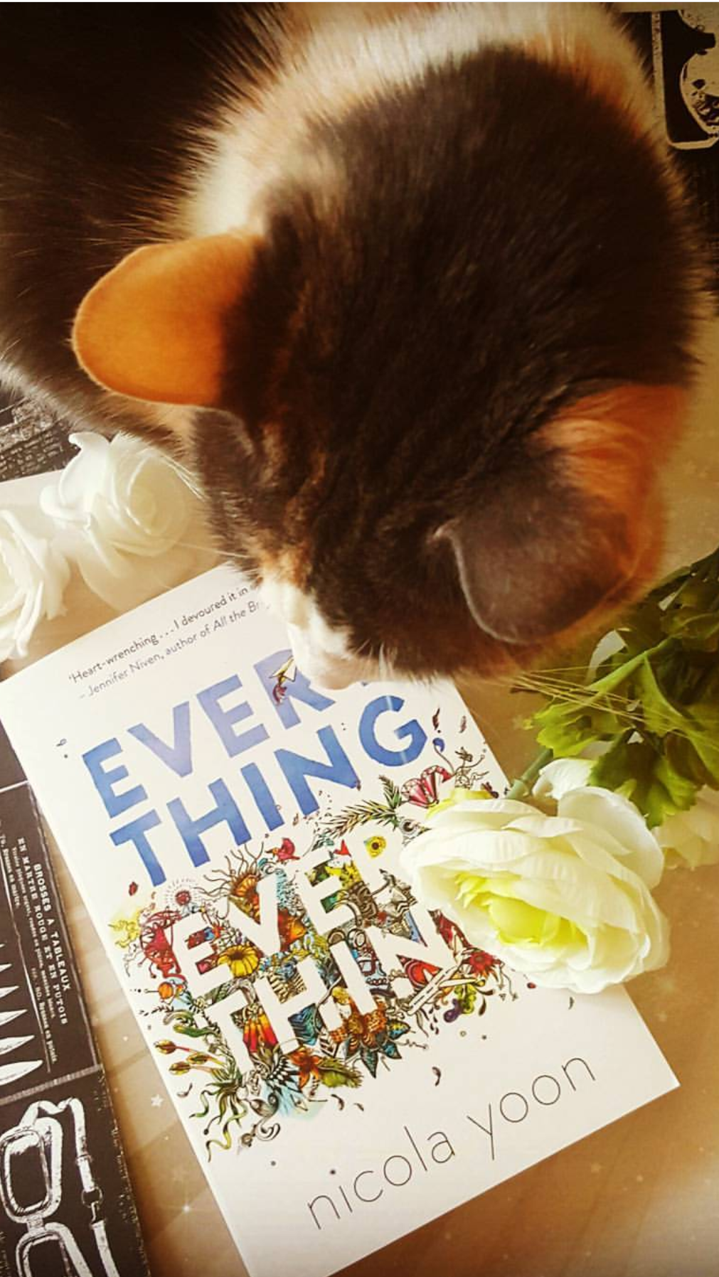 Everything Everything ***