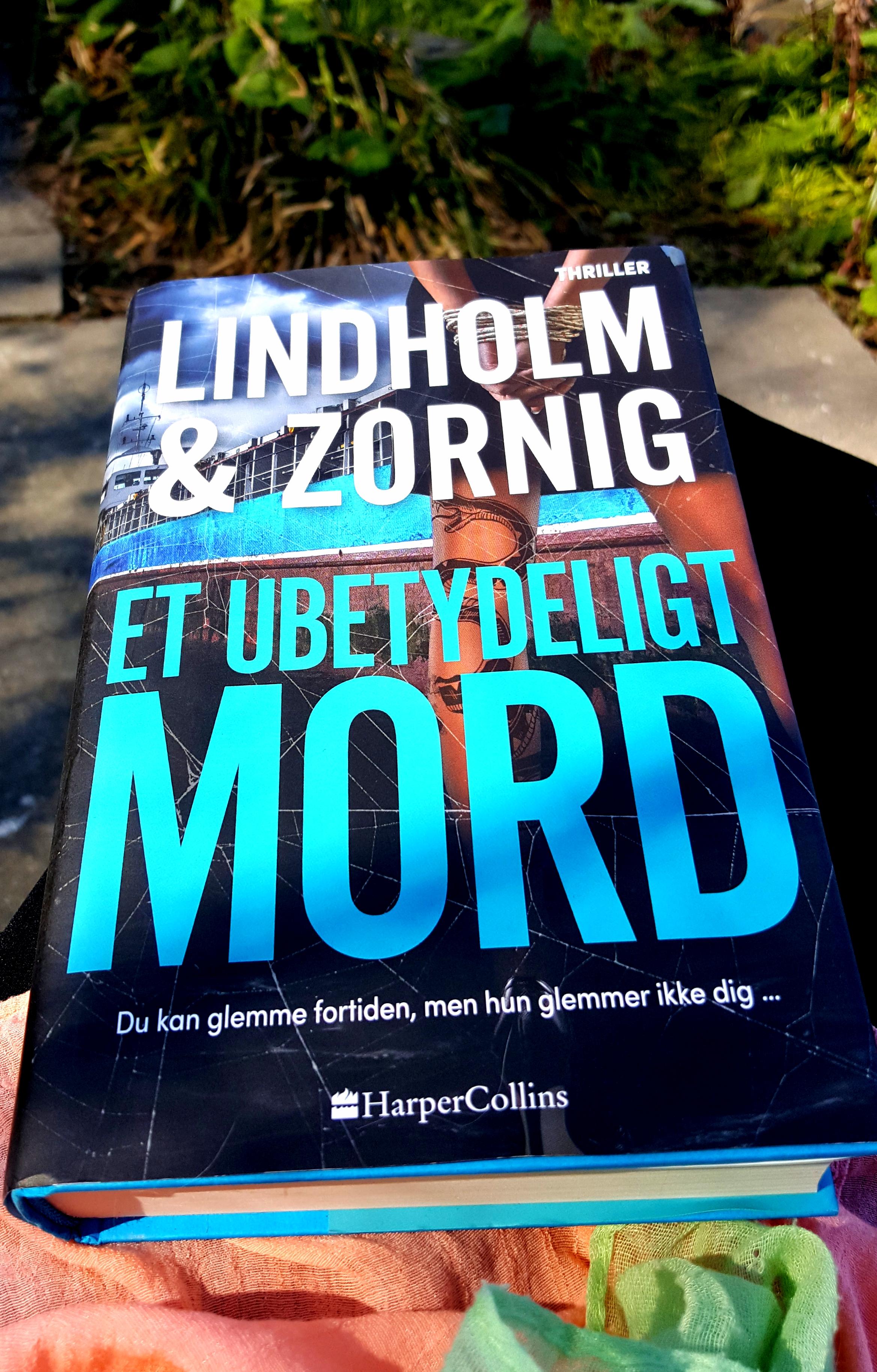 Et ubetydeligt mord af Lindholm & Zornig