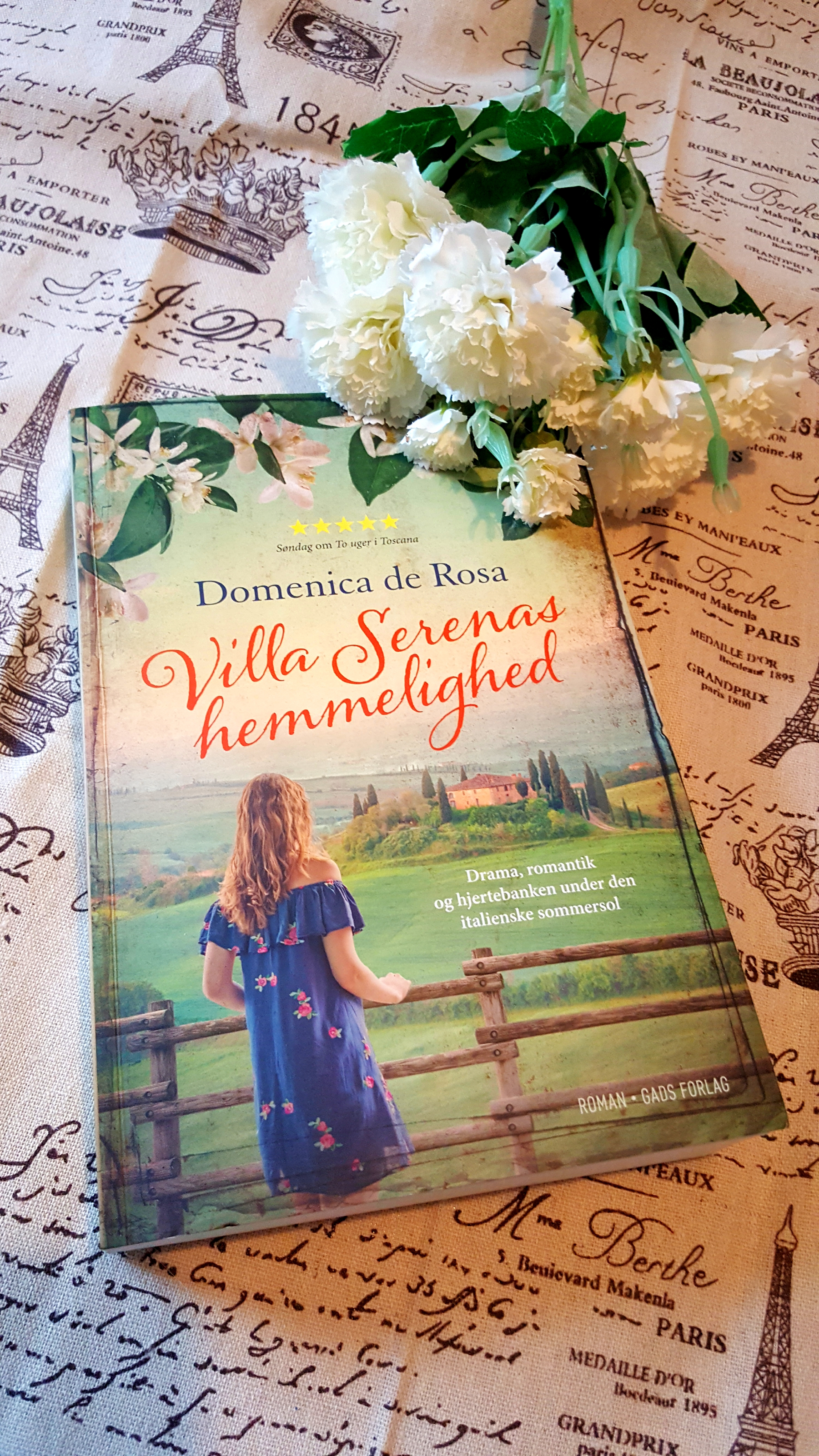 Villa Serenas hemmelighed af Domenica de Rosa