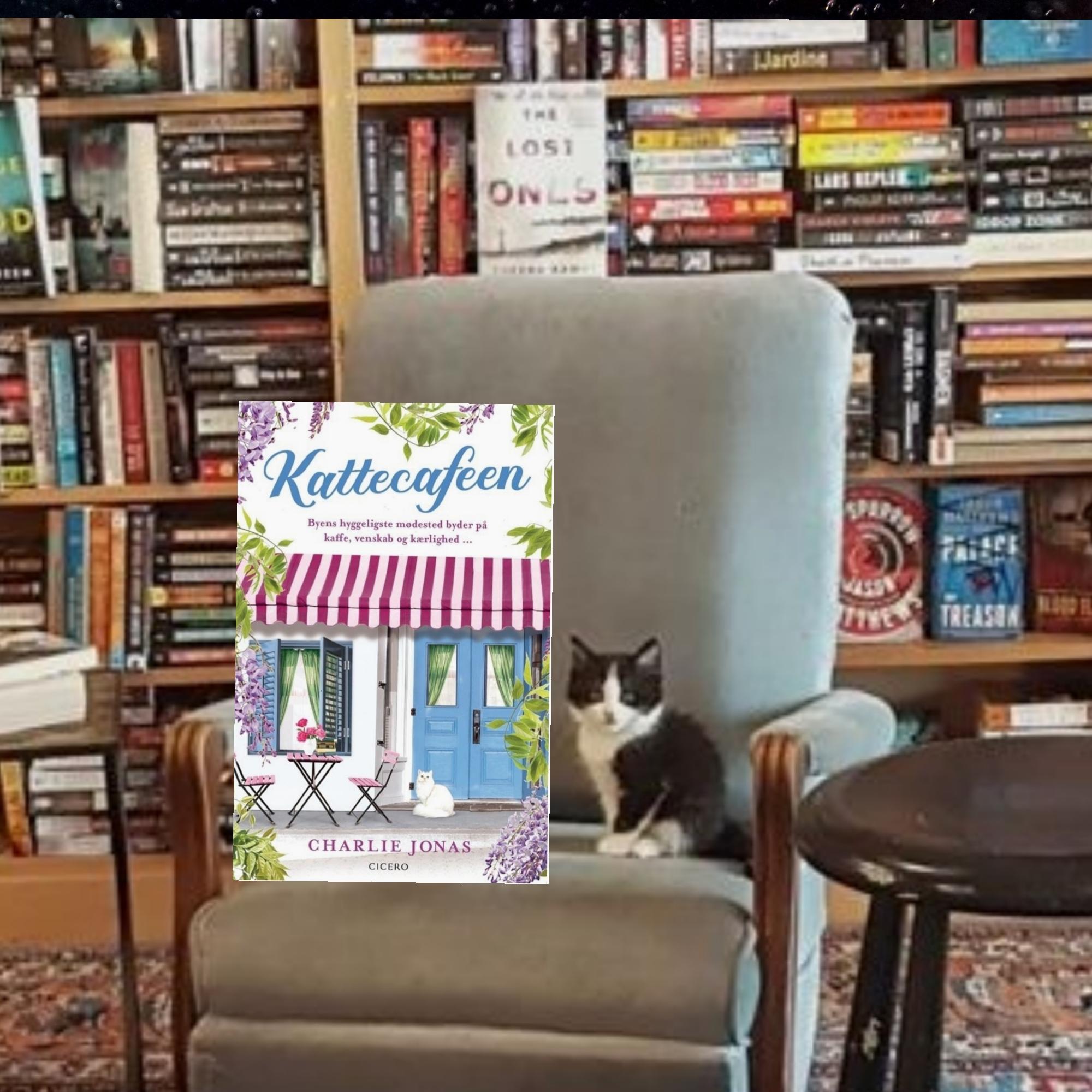 Kattecafeen af Charlie Jonas